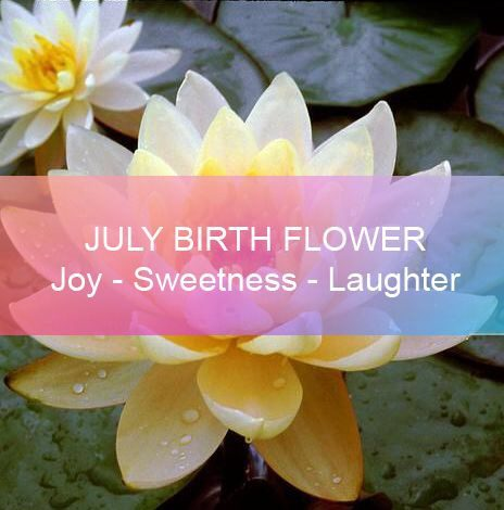 July Birth Flower