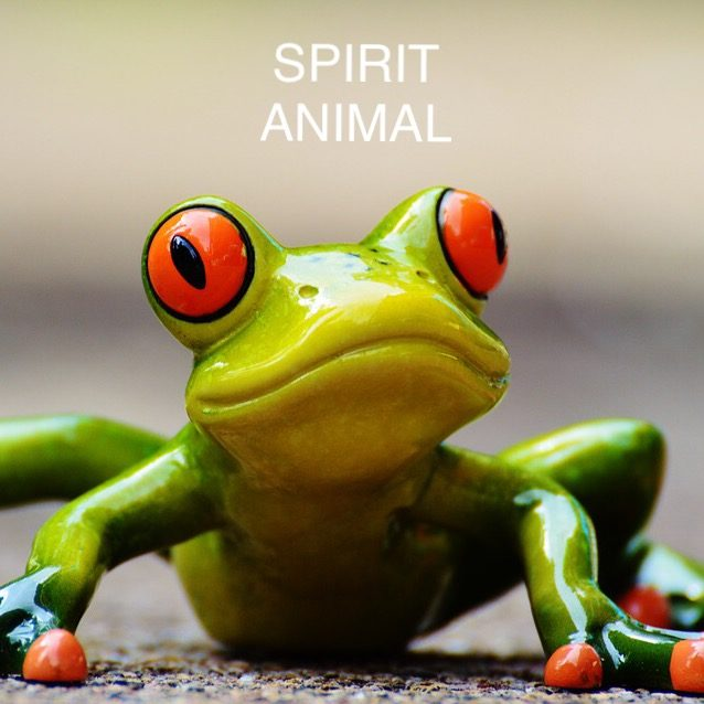 Spirit Animals