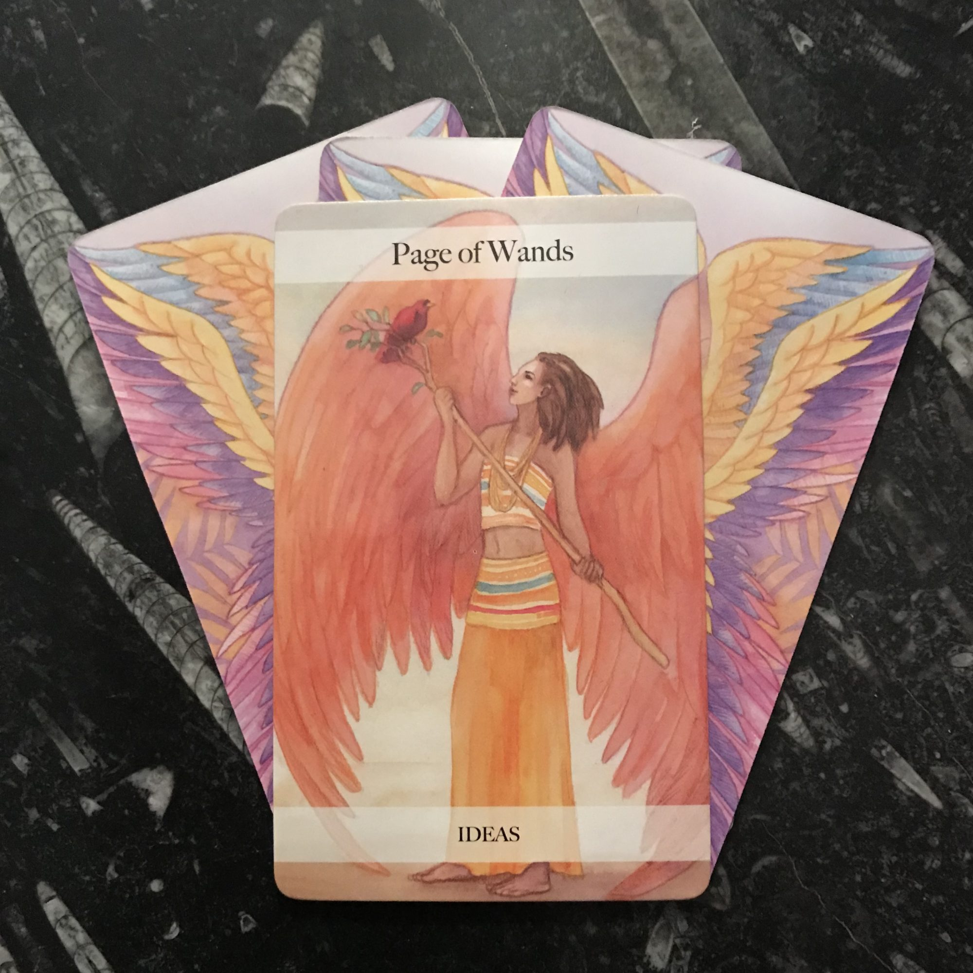 ANGEL TAROT COURSE - PAGES
