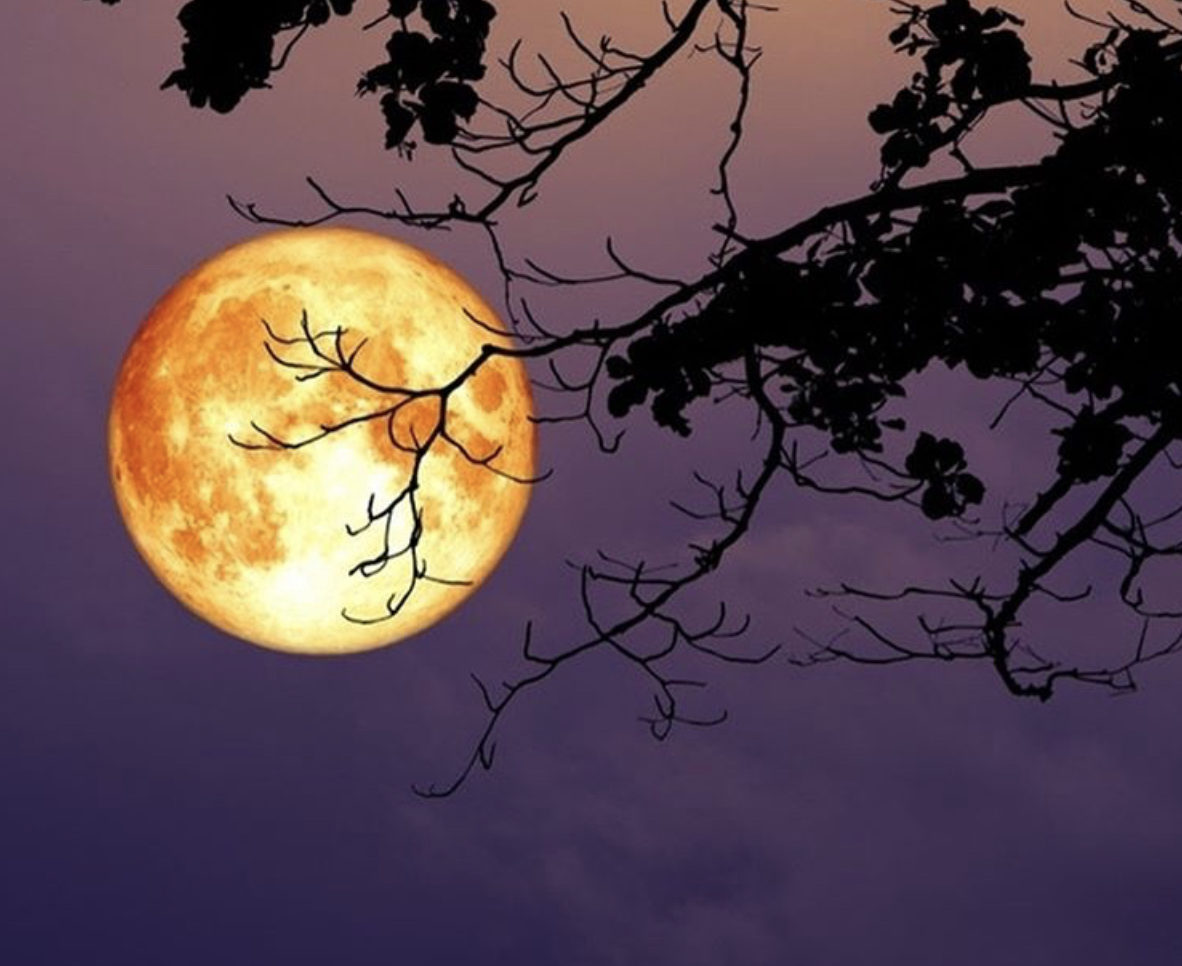 Libra Super Moon Ritual March 2019